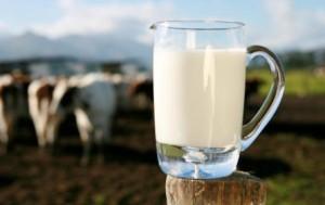 latte-di-mucca