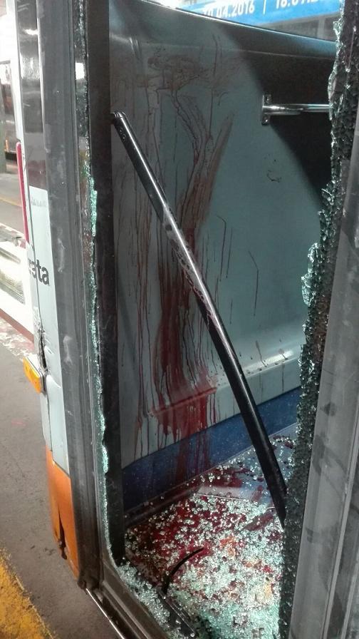 sangue sul bus 4