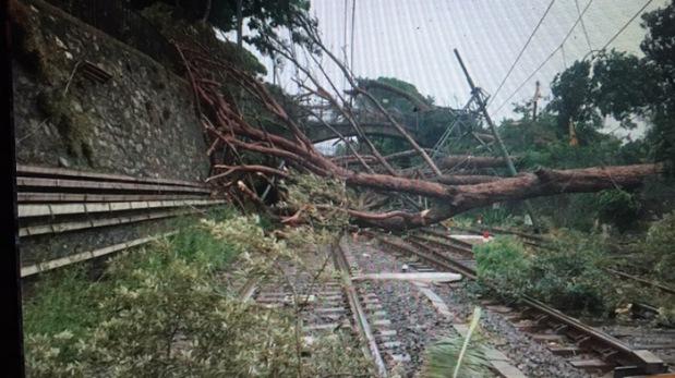 albeto caduto sui binari ferrovia maltempo
