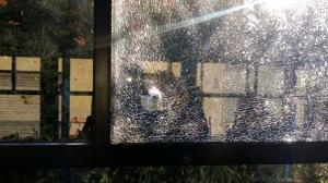 vetro bus amt sfondato col proiettile di una pistola ad aria compressa