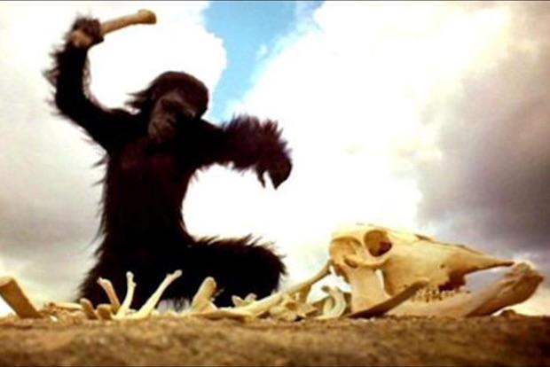 scimmia-odissea-nello-spazio